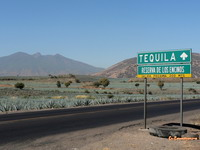 Road to Tequila